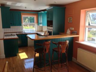Dingle Townhouse - Dingle vacation rentals