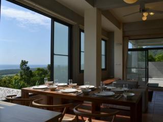 David SamStrong Villa - Taitung vacation rentals