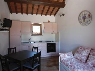 Aria Toscana Farm - Apartments with private garden - Campiglia Marittima vacation rentals