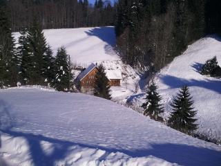 Waldheim Baschloch - Trogen vacation rentals