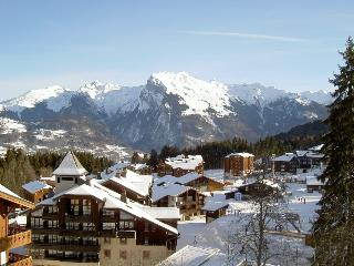 Le Refuge de L'Alpage Morillon - Grand Massif vacation rentals