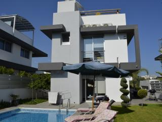 Fleur De Mer Villa in Hi-Tech - Limassol vacation rentals