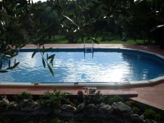 Tuscan holiday guest house with 3 bedrooms, 2 terraces, private pool and garden, 30 minutes drive from Florence - Pescia vacation rentals