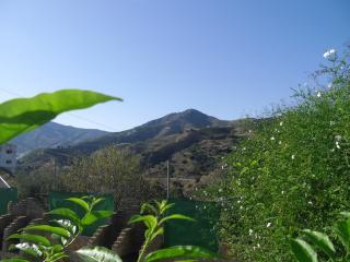 Almachar Apartahotel - Almachar vacation rentals