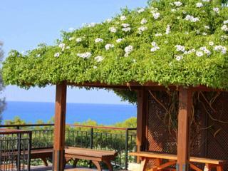 Impressive villa with pool (Ar - Argaka vacation rentals