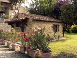 La Capannina di Romani Rinaldo - Castiglion Fiorentino vacation rentals
