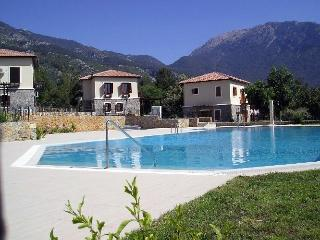 Olive Tree Villa - Ovacik vacation rentals
