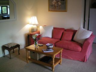 Springfield cottage - Newchurch vacation rentals