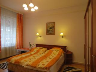 3 bdr,  free PARKING in Center - Budapest vacation rentals