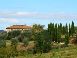 Stunning views at Siena's doorstep - Free WiFi - Costalpino vacation rentals
