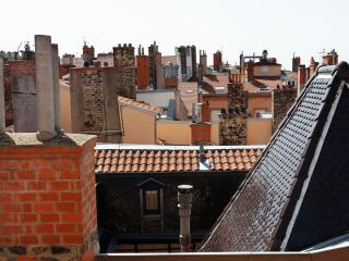 Les Toits de Lyon, loft 3* rénové par architecte - Lyon vacation rentals