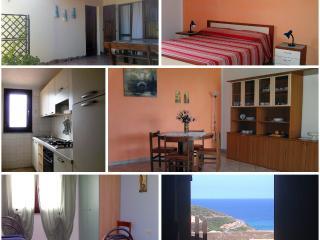 Casa Elisa, spaziosa e accogliente! - Arbus vacation rentals