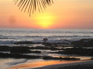 On The Beach 45 mt. from sea - Puerto Viejo de Talamanca vacation rentals