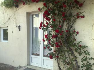 Petit Cerisier Holiday Cottage Special Offer - Vouvant vacation rentals