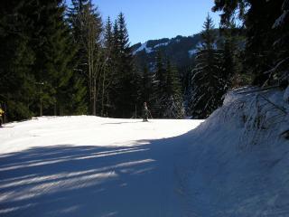 Les Fleurs Alpes - Les Carroz-d'Araches vacation rentals
