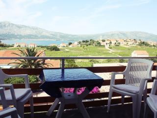 Baglija apt. with Amazing view - Lumbarda vacation rentals
