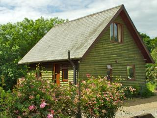Luxury Scandinavian Pine Lodge - Hudswell vacation rentals
