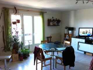 GRAND APPARTEMENT - Perpignan vacation rentals
