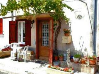 Maison de Vigne - Carcassonne vacation rentals