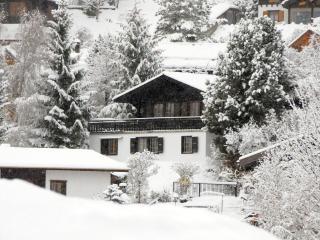 Chalet idefix - Nendaz vacation rentals