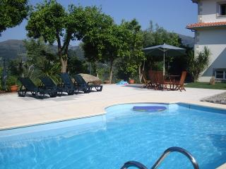 Detached villa with private swimming pool - Terras de Bouro vacation rentals