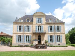 Chateau Les Bardons with pool - Roanne vacation rentals