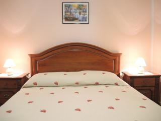 Apartment with Air Condition and WiFi - Portoroz vacation rentals