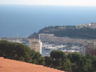 Villa D'Azur - Beausoleil vacation rentals