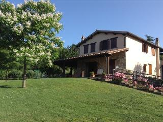 Villa Caterina - Amelia vacation rentals