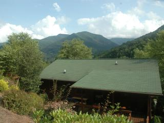 HIKERS BIKERS RELAXERS,3 B/B SUITES, EASY ACCESS - Pisgah Forest vacation rentals