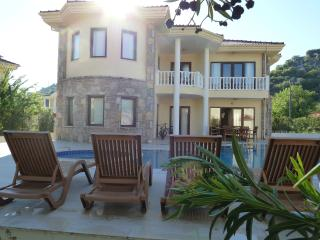 Villa Palmiye - Dalyan vacation rentals