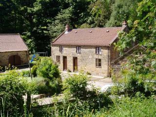 Beck cottage, Raisdale Mill - Chop Gate vacation rentals