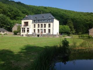 Chateau domaine le Risdoux - Vireux-Wallerand vacation rentals