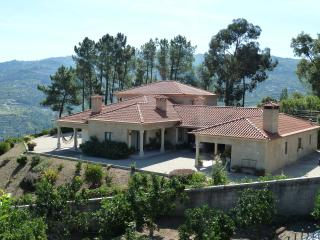 Douro Mansion - Awesome View - Relaxing Holidays - Resende vacation rentals