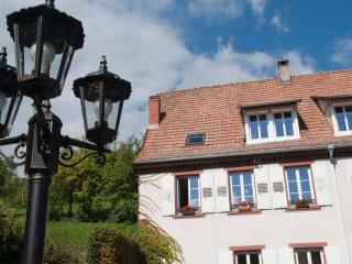 Relais des thermes - Bas-Rhin vacation rentals