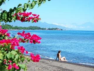 Puri Segara - Buleleng vacation rentals