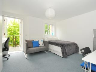 Central! Zone 1. 4 minutes to tube - London vacation rentals