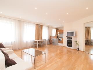 Spacious Apartment in Center - Saint Petersburg vacation rentals
