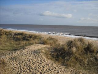 Norfolk Beachside Retreat - Great Yarmouth vacation rentals