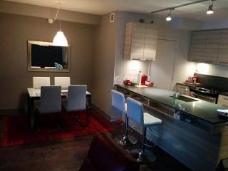 Stylishly furnished. Amazing location. - Montreal vacation rentals