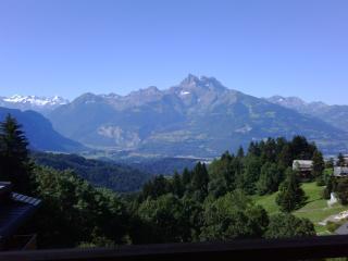 Domaine de l'Alpage - Chesieres vacation rentals