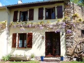 La Roche - Vernoux-en-Gatine vacation rentals