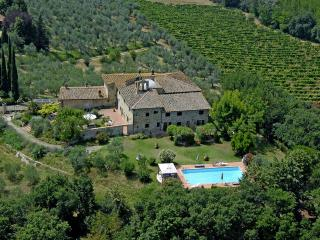 S. Andrea a Cellole Pino - Montespertoli vacation rentals