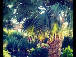 Erni1 - Izmir vacation rentals