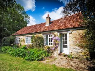 Barn Cottage - Bridport vacation rentals
