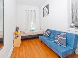 Beautiful 1BR Apartment - Walk to Central Park - New York City vacation rentals