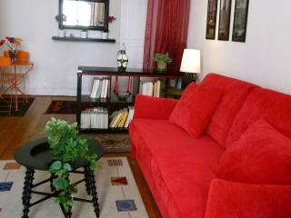 A cosy apartment in the heart of the city - Lyon vacation rentals