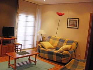 Apartment 8 p 5 min beach WIFI - San Sebastian - Donostia vacation rentals