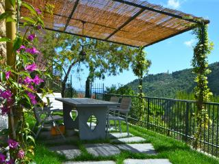 Attic Fantastic View near Portofino Cinque Terre - Leivi vacation rentals