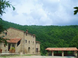 Santarsa, Private Villa with swimming pool - Sansepolcro vacation rentals